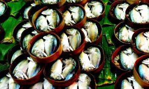 Seafood+slavery