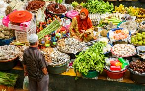 Politics of Halal certification: the collapse of the MUI's