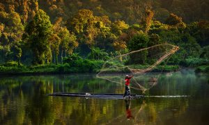 forest-westjava-CIFOR-flickr-1024